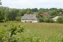 In the Village